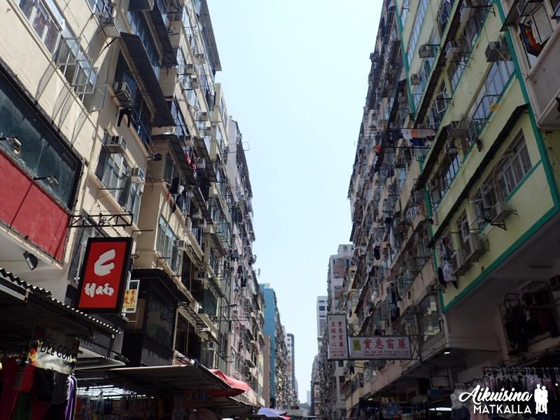Hongkong katuja